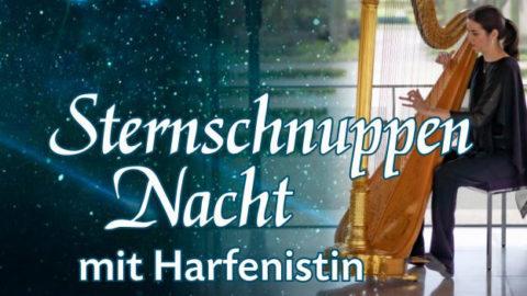 Sternschnuppennacht mit Harfenistin